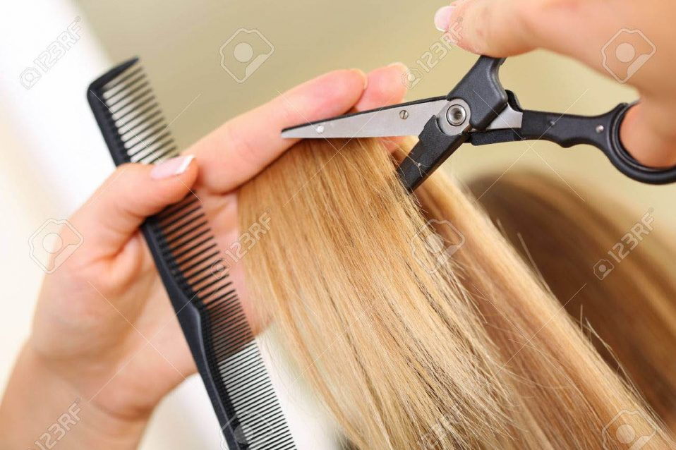 48582186-female-hand-holding-comb-and-hot-thermal-scissors-cutting-tips-of-long-straight-blonde-hair-lock-clo